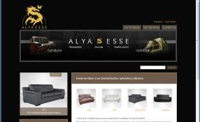 Alya-Esse: Design & Programming