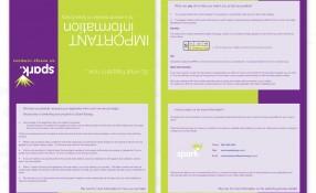 Spark Energy: Information Form