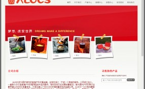 Alocs.cn: Design & Programming