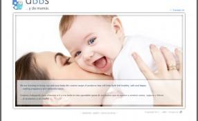 dBBs.com.es: Design & Programming